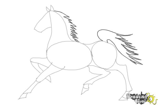 How to Draw a Horse (Ver 2) - Step 8