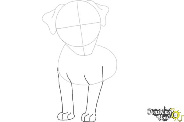 How to Draw a Dog - Step by Step - Step 4