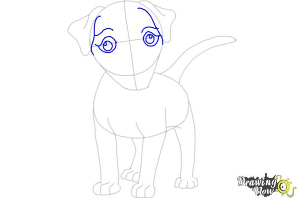 How to Draw a Dog - Step by Step - Step 6