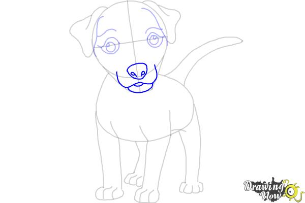 How to Draw a Dog - Step by Step - Step 7
