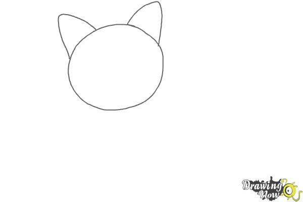 How to Draw a Cat - Step 1