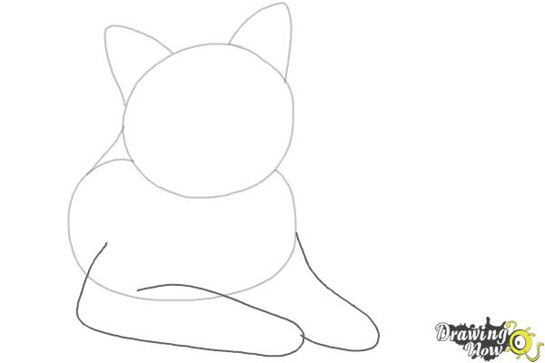 How to Draw a Cat - Step 3