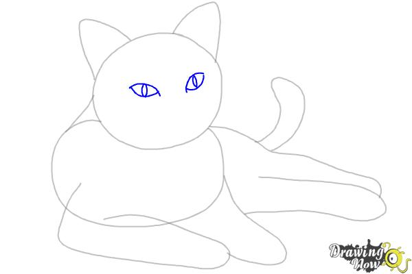 How to Draw a Cat - Step 5