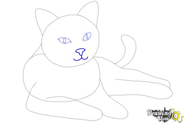 How to Draw a Cat - Step 6