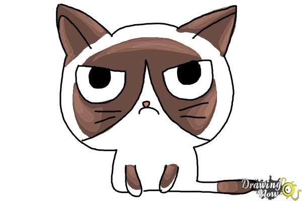 How to Draw a Grumpy Cat - DrawingNow