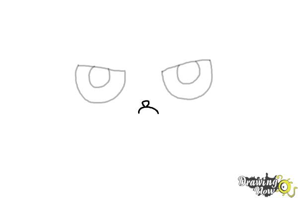 How to Draw a Grumpy Cat - Step 3