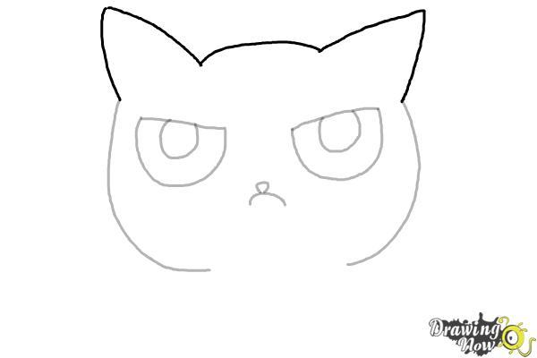 How to Draw a Grumpy Cat - Step 5