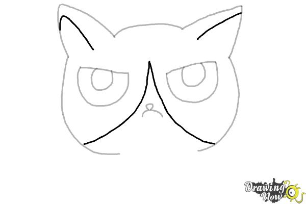 How to Draw a Grumpy Cat - Step 6