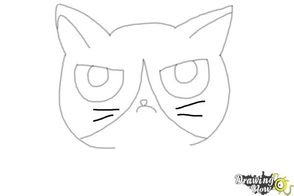 How to Draw a Grumpy Cat - Step 7