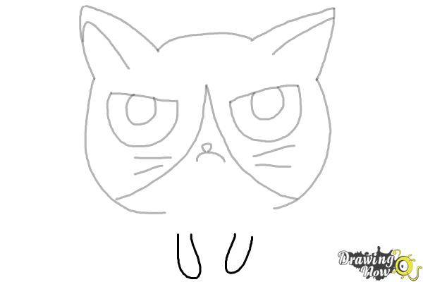 How to Draw a Grumpy Cat - Step 8