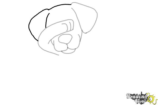 How to Draw a Cute Dog Dabbing - Step 6