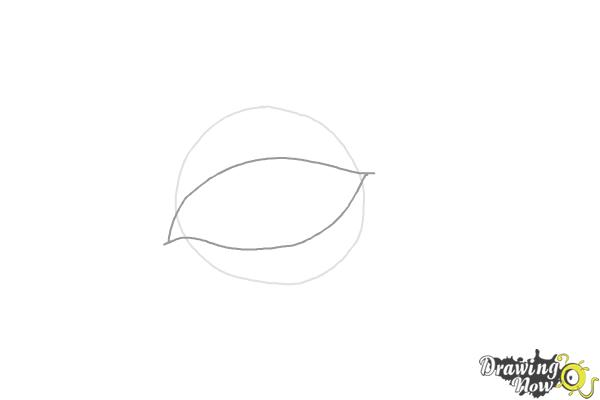 How to Draw an Eyeliner - Step 2
