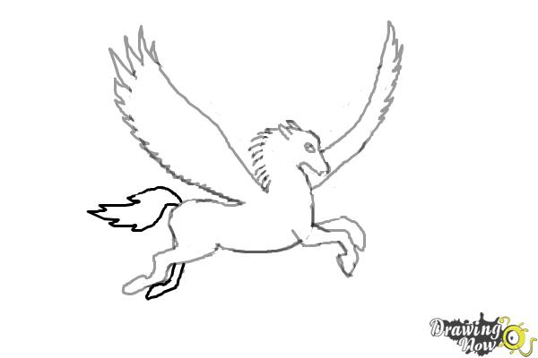 How to Draw a Pegasus - Step 8