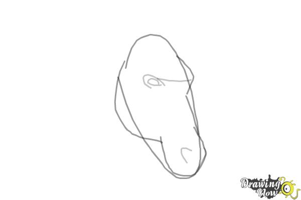 How to Draw a Horse Head - Step 3