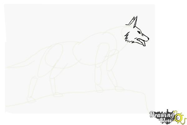 How to Draw an Anime Wolf - Step 6