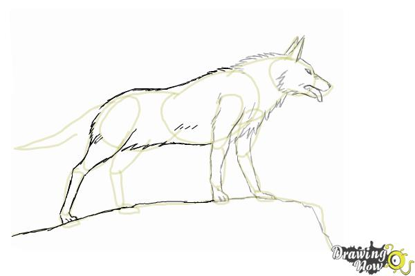 How to Draw an Anime Wolf - Step 8