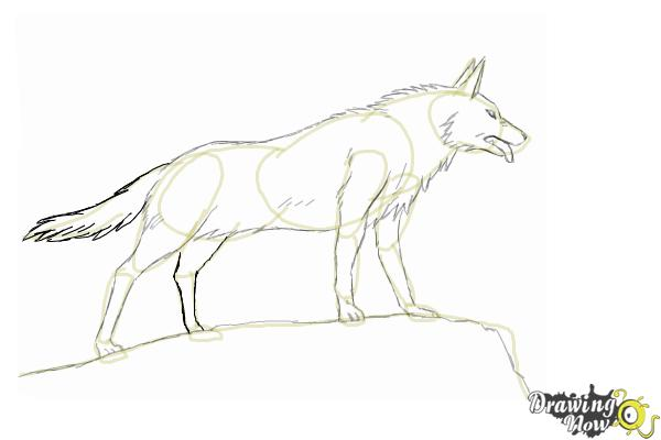 How to draw an anime wolf step 9