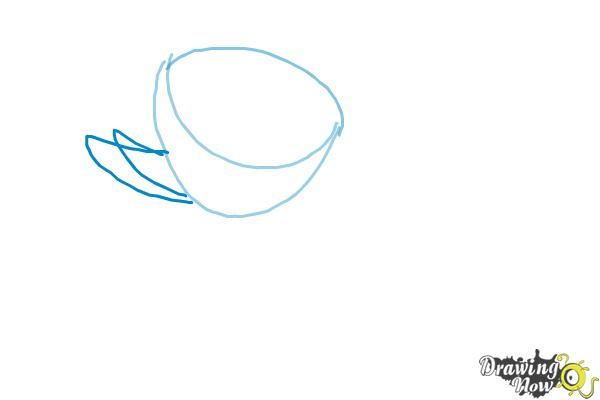 How to Draw a Lotus Flower, Water Lily - Step 2