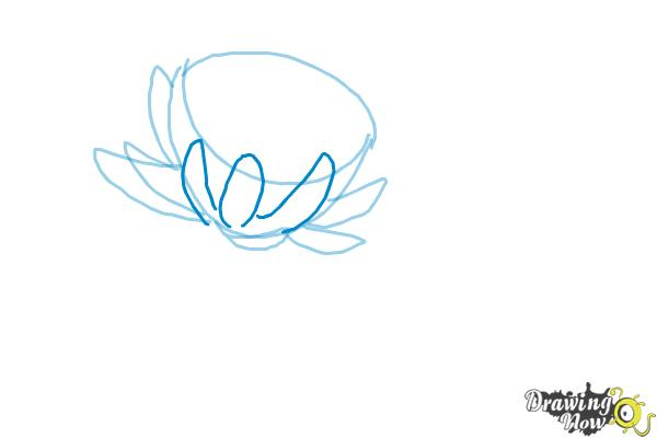 how to draw a realistic lotus flower step by step