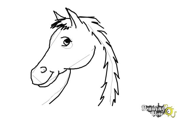 How to Draw a Horse Head Step by Step - Step 5