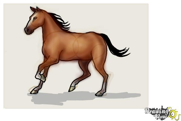 How to Draw a Horse Step by Step - Step 10