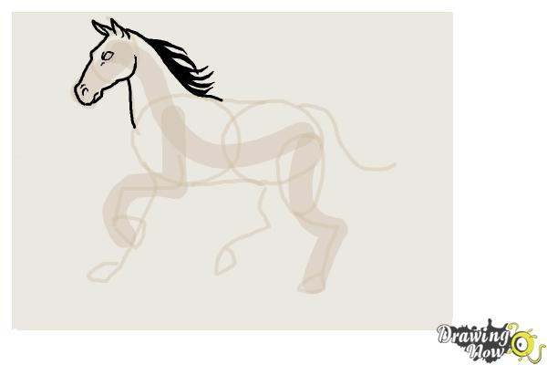 How to Draw a Horse Step by Step - Step 6