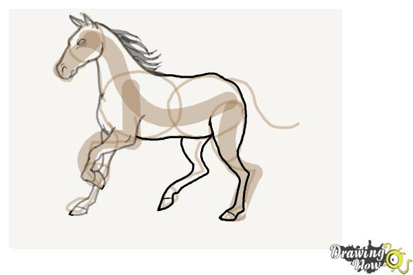 How to Draw a Horse Step by Step - Step 8