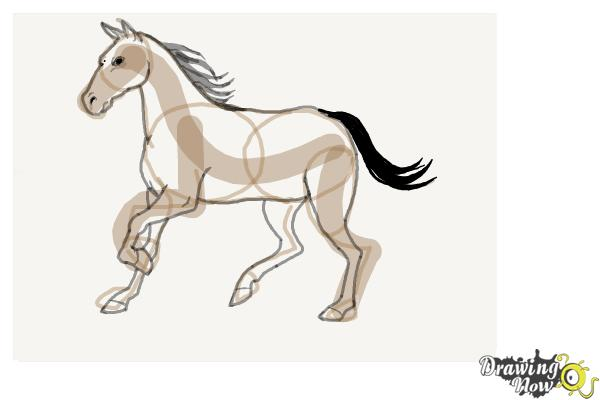 How to Draw a Horse Step by Step - Step 9