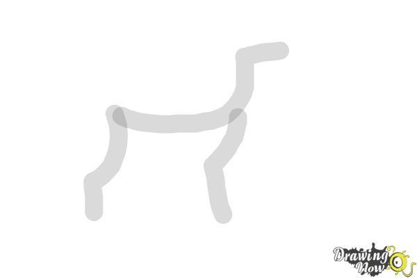 How to Draw a Black Labrador Retriever - Step 1