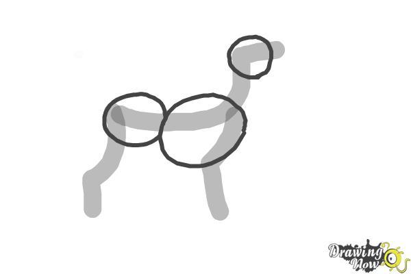 How to Draw a Black Labrador Retriever - Step 2